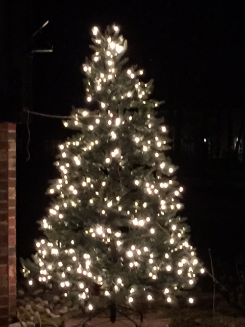 Vantage Point Lights